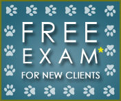 Free Exam for New Clients