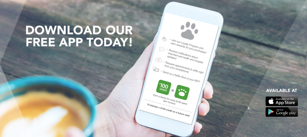 Download our free Vet2Pet app today!